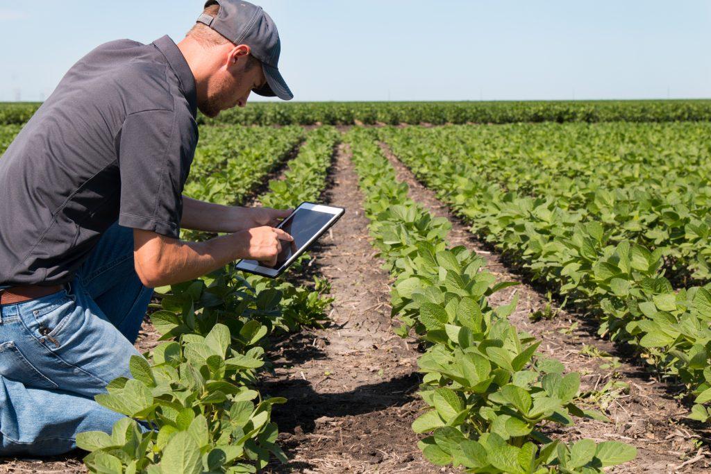 Usos registro actividades agrícolas